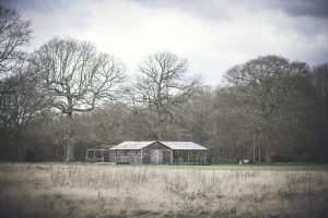Barn and surroundings at the Dreys